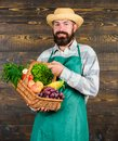 Fresh organic vegetables in wicker basket. Farmer straw hat presenting fresh vegetables. Farmer with homegrown Royalty Free Stock Photo