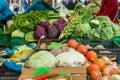 Fresh organically grown vegetables.
