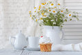 Fresh Oxeye Daisies on table in white Pitcher in interior Royalty Free Stock Photo