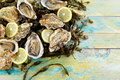 Fresh oyster and seaweed still life