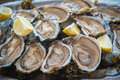 Fresh oysters and lemon plate Royalty Free Stock Images