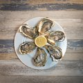 Fresh oysters white plate and lemon on wooden desk Royalty Free Stock Photo