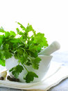 Fresh parsley in a marble mortar Royalty Free Stock Photo
