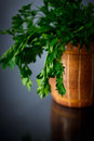 Fresh parsley sprig of on a black background Royalty Free Stock Photo