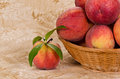 Fresh peach fruits juicy in a basket Royalty Free Stock Photos