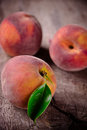 Fresh peaches Royalty Free Stock Photography