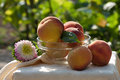 Fresh peaches in glass bowl on background garden Royalty Free Stock Image