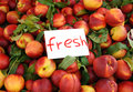 Fresh peaches on the market Royalty Free Stock Photos