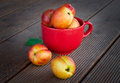 Fresh peaches on wood background in red cup Royalty Free Stock Photo