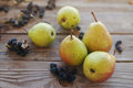 Fresh pears and berries of a black mountain ash Royalty Free Stock Photo