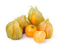 Fresh physalis cape gooseberry  isolated on white Royalty Free Stock Photo