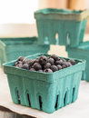 Fresh Picked Blueberries Stock Photography
