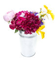 Fresh picked flowers in silver metal bucket a can full of with white background Royalty Free Stock Images