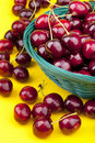 Fresh picked organic cherries Stock Photo