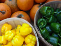 Fresh picked produce in baskets at a farmers market of produces local including pumpkins green and yellow bell peppers Royalty Free Stock Image