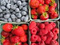 Fresh picked strawberries, raspberries and Blueberries Royalty Free Stock Photo