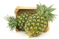 Fresh pineapple fruits in a wooden crate Royalty Free Stock Photo