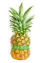 Fresh pineapple with green measuring tape isolated Stock Photos