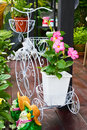 Fresh pink allamanda flowers in flower pot on plastic coated wire bicycle blooming the garden Stock Photos