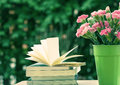 Fresh pink carnation flower with books Royalty Free Stock Photo