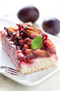Fresh plum cake Royalty Free Stock Photography