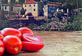 Fresh plum tomatoes on rustic wooden table with old countryside village in background Stock Photo