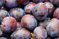 Fresh plums macro image of Stock Photos