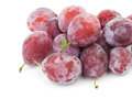 Fresh plums with water drops. Royalty Free Stock Photo