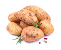 Fresh potatoes Stock Images