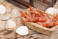 Fresh prawns on the beach Royalty Free Stock Images