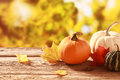 Fresh pumpkin and squash in an autumn garden assorted with colorful golden foliage on the trees standing on old wooden table Royalty Free Stock Image