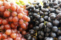 Fresh Purple and Red Grape Royalty Free Stock Photography