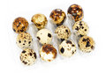 Fresh quail eggs transparent box image taken over white background Stock Image