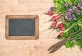 Fresh radish with green garden herbs. Vegetables and chalkboard