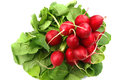 Fresh radish white background Royalty Free Stock Photo