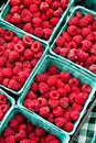 Fresh Rasberries Royalty Free Stock Photos