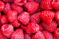 Fresh raspberries closeup macro photo Stock Photo