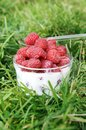 Fresh raspberries with milk Stock Photography
