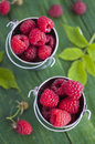 Fresh raspberries in small buckets Stock Images