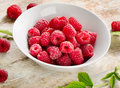 Fresh raspberries sweet selective focus Stock Photography