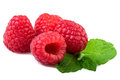 Fresh raspberry with mint leaf isolated on white Royalty Free Stock Photo