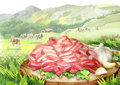 Fresh raw minced meat with spices and salad leaves on the plate in landscape with cows.