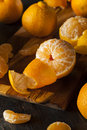 Fresh raw organic mandarin oranges ready to eat Royalty Free Stock Images