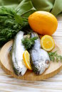Fresh raw trout fish on the kitchen board Royalty Free Stock Images
