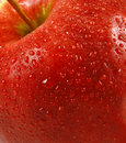 Fresh red apple Royalty Free Stock Images