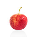 Fresh red apple isolated, Clipping path Royalty Free Stock Photo
