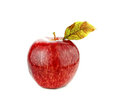 Fresh red apple on white background Stock Photography