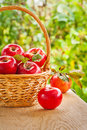 Fresh red apples in busket on wooden table in garden
