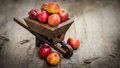 Fresh red apples in a miniature wheelbarrow on wood background Stock Images