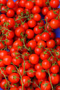 Fresh red cherry tomatoes at a market Royalty Free Stock Photo